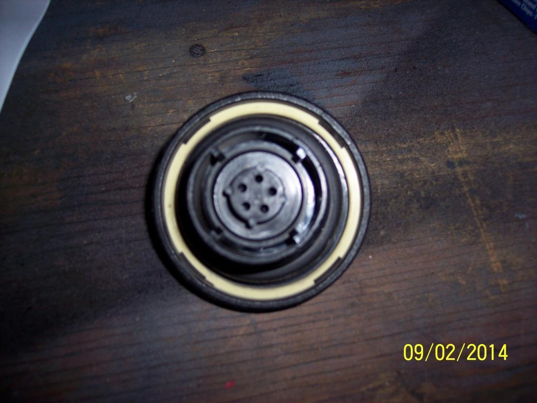 P0456 Engine Code on my 2003 Durango-100_52271.jpg ...